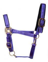 Tuff Stuff Halter - Purple