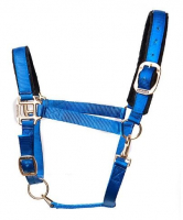 Tuff Stuff Halter - Royal