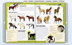 Ich liebe Pferde!